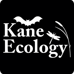 Kane Ecology Ltd