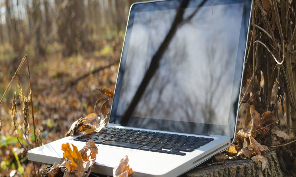 Laptop in a woodland